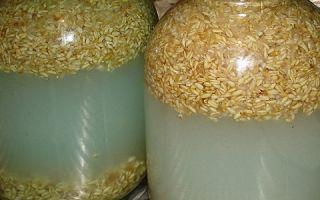 Рецепт браги из пшеницы для самогона